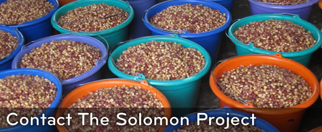 The Solomon Project: CONTACT